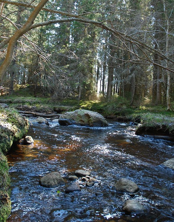 Naturreservat vandrarhem
